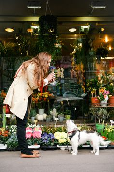 walking the dog: paris