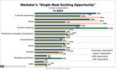 Marketer's Single Most Exciting Opportunity - Jan2014