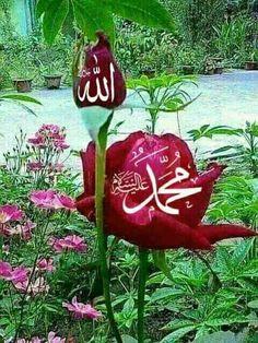 Muhammed Sav, Muhammad, Allah, Beautiful Places, Religion, Lights, Pearls, Christmas Ornaments, Wallpaper
