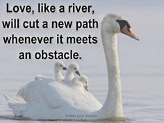 Love uses obstacles to create new paths