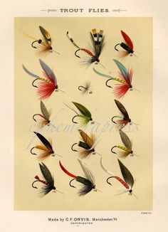 Items similar to TROUT FLIES glorious fly fishing print no.-Items similar to TROUT FLIES glorious fly fishing print no. 2 on Etsy EPHEMERApress (repurposed antique imagery) on Etsy. Fly Fishing Lures, Trout Fishing Tips, Gone Fishing, Fishing Reels, Catfish Fishing, Fishing Stuff, Fishing Guide, Salmon Fishing, Fishing Gifts