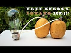 Free energy For Home - - Free energy Projects Videos - Free energy Machine - Gibbs Free energy Videos Science Projects For Kids, Science Experiments Kids, Science For Kids, Potato Light Bulb, Electricity Experiments, Homemade Generator, Energy Projects, How To Make Light, Activities For Kids