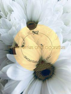 #strawberries #cigarettes #phrases #frase #wallpaper #background #fondo #fondodepantalla #aestethic