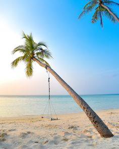 Whether you're looking for something to make you shiver, something to make you smile, or something to make you think, one of these books is sure to keep your nose glued to the page. The post 10 Essential Summer Beach Reads appeared first on Miranda Schroeder.