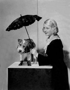 Mary Carlisle 🎬🎬🎬