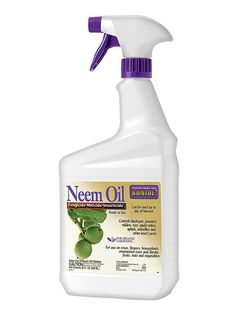 Aphids? Get Neem Oil Spray for Aphid and Fungus Control | Gardeners.com