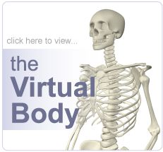 The virtual body tour button