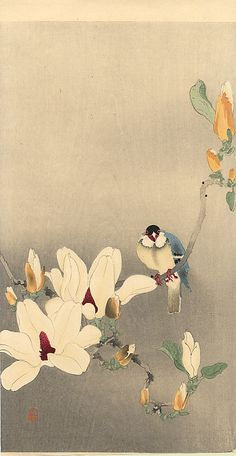 Blue Bird and Magnolia - Ohara Koson