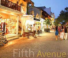 The famous 5th Avenue in Playa del Carmen! Fun place to dine / drink shop & shop... Practice your bargaining skills!!!