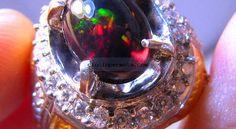 Di Indonesia, black opal banyak ditemukan di daerah Lebak Banten Jawa Barat. Daerah ini merupakan tempat yang kaya akan kandungan silika dan kuarsa. Batu ini yang sekarang banyak diburu para kolektor batu mulia