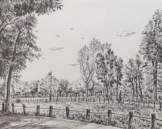 Artist - Itsuo Kiritani   Title - Mizumoto Park(水元公園 ) Dimensions - (24.5cm x 30.5cm)Year - 2007  Media - Pen and Ink on Paper   Inquiry