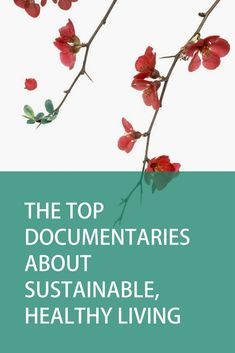 Ranging from climate change and environmental issues; diets and health; social justice and inequality; and spirituality; I hope you enjoy my selection of the top documentaries on sustainable, healthy living from Good Documentaries To Watch, Spiritual Documentaries, Netflix Movies To Watch, Movie Dates, Film Music Books, Environmental Science, Save The Planet, Sustainable Living, Peace Of Mind