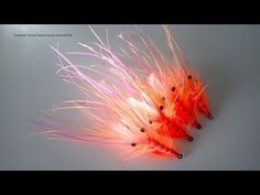 Tying a Pattegrisen Shrimp variant with Davie McPhail - YouTube