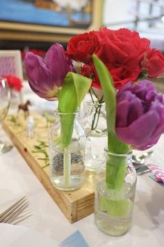 farm animals and child party / garden roses / tulips