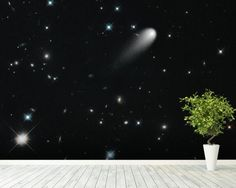 Galaxies, Comets, and Stars! Oh My! wall mural room setting
