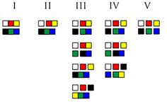 The World Color Survey refined hierarchy of color naming evolution: The stages are illustrated by which of 6 basic color types are grouped together in each stage. Figure by Mikael Veidemo-Johansson, CC-BY. From: How the Munsell Book of Color Revolutionized Linguistics Part 5