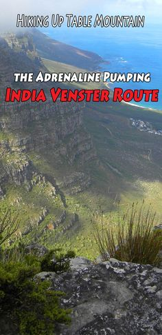 Hiking Up Table Mountain, Cape Town – the India Venster Route  #Tablemountain #Capetown #southafrica