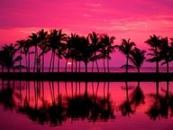 Pink Sunset at a tropical beach for a beautiful wedding! Beautiful Sunset, Beautiful World, Beautiful Places, Beautiful Pictures, Stunningly Beautiful, Beautiful Scenery, Amazing Photos, Wonderful Places, Absolutely Gorgeous