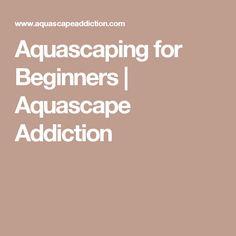 Aquascaping for Beginners | Aquascape Addiction