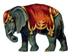 Vintage Image - Circus Elephant - The Graphics Fairy