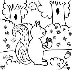 Bas de Eekhoorn speelt de hoofdrol in de Creatieve Droomvallei Voorleesinkleurboeken. En ook in de creatieve workshops komt Bas steeds om de hoek kijken. De kinderen verheugen zich daar erg op, ze beginnen hem al te kennen.