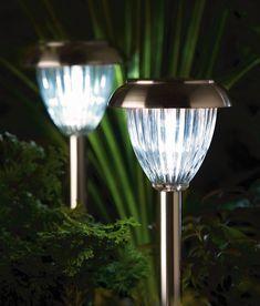 Luxform Solar Garden Lights Eco Garden, Garden Shop, Home And Garden, Garden  Ideas