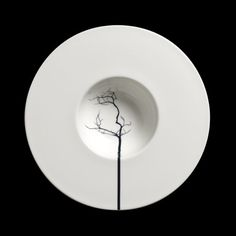 Porcelain | Fine Bone China patterns | Black Forest | Plate | Online Store