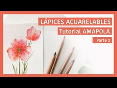 Como usar los lápices acuarelables Parte 2 - YouTube Watercolor Pencil Art, Guache, Art Tips, Colored Pencils, Drawings, Painting, Art Ideas, Bullet Journal, Youtube