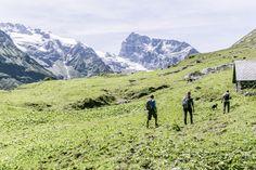 wandern, hiking, nature, Engelberg