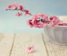 Beautiful things / flowers