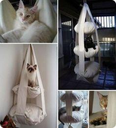 El trapecio para gatos
