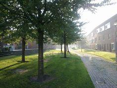 Wonen in een gebied waar de voetganger de baas is; Het Vondelparc in Utrecht. Dit gebied is een zeer duurzame mooie moderne wijk waar de mens centraal staat en de baas is. Overal is groen te vinden en er staan veel bomen, ook wordt hier ondergronds parkeren gerealiseerd wat voor ons ook nog een potentiele optie is.