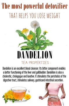 Dandelion – the most powerful detoxifier that helps you lose weight - Ideal Beauty Guide Herbal Remedies, Health Remedies, Natural Remedies, Health Tips, Health And Wellness, Dandelion Recipes, Ideal Beauty, Healing Herbs, Good Fats