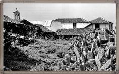 Adeje - La Quinta año 1969 #canariasantigua #blancoynegro #fotosdelpasado #fotosdelrecuerdo #recuerdosdelpasado #fotosdecanariasantigua #islascanarias #tenerifesenderos