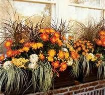 decorating window boxes for fall - Bing Images