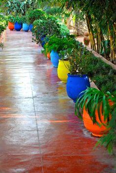 Jardins de Majorelle in Marrakech Garden Floor, Terrace Garden, Mexican Courtyard, Moroccan Garden, Outdoor Living, Outdoor Decor, Garden Landscaping, Interior And Exterior, Garden Design