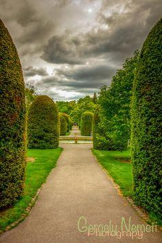 Dream - Wilhelma Zoo and Botanic Garden - Stuttgart - Germany Beautiful World, Beautiful Gardens, Beautiful Places, Time In Germany, Gardens Of The World, Plant Projects, Formal Gardens, Garden Landscape Design, Tier Fotos