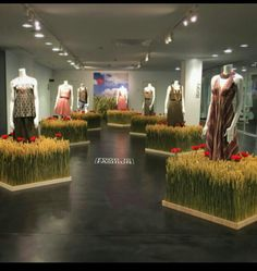 "FOOD is FASHION, ""Don't judge each day by the harvest you reap but by the seeds that you plant"", pinned by Ton van der Veer"