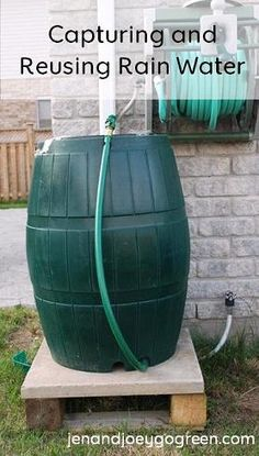 This would come in handy with all the Rain we have been having! An easy way to help the environment. Instead of using water from a well or electricity do this. This water can be used to water plants and other outdoor uses. Saves water and electricity. Green Life, Go Green, Potager Bio, Help The Environment, Rainwater Harvesting, Water Conservation, Living At Home, Save Water, Water Plants