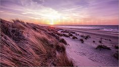 This picture shows the beach of Renesse located in Zealand a part of the Netherlands. It was taken in the evening just before the sun hits the horizon. The day was windy so the grass as bent to the side when i took the picture. I tried to recreate the mood of the moment using soft and warm colors. I was really impressed by the beautiful sky created by the stripes left behind by passing airplanes.