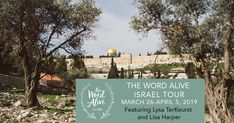 Join Lysa TerKeurst and Lisa Harper for teaching and worship at over 40 holy sites in Israel in early 2019!