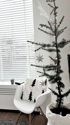 Geen plek voor een volle kerstboom? Kies voor een Cedrus Libani Glauca en plaats hem in een zak voor een Scandinavisch kerst gevoel.