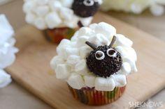 Adorable sheep cupcakes