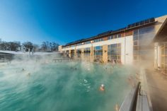 It is not only the medicinal water that has its spontaneous effect at the thermal baths at Harkány. The natural conditions are excellent: the favourable climate, the micro-climate of the spa, the. Hungary, Budapest, Bugs, Spa, Mansions, Thermal Baths, House Styles, Water, Home Decor