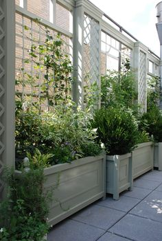 Modern Trellis Design for Beautiful Garden 5 Ways to Add Style With a Garden Trellis Modern Trellis design for beautiful garden. A garden trellis is normally used only for providing a framework on … Long Planter, Diy Garden, Trellis Design, Garden Dividers, Garden Wall, Modern Trellis Design, Modern Garden, Modern Trellis, Beautiful Gardens