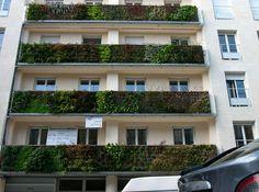 pixpeedia: Vertical gardens of Patrick Blanc