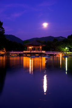 Interesting Nara - http://www.travelandtransitions.com/destinations/destination-advice/asia/