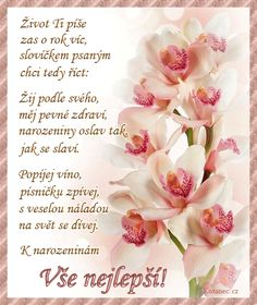 To ti přejí strejda a teta Birthday In Heaven Mom, Happy Birthday Quotes, Birthday Wishes, Birthday Cards, Birthday Presents, Origami, Diy And Crafts, Mason Jars, Spring