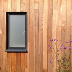 powder coated aluminium windows set inside timber clad exterior