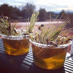 pollenarts -  If any of you would like to help the hungry winter bees ... just mix 50/ 50 sugar and water or honey and water, add some sticks or pine needles to keep the bees from drowning .. and enjoy the buzzZZzz : )